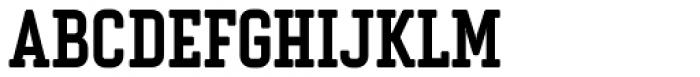 Vin Slab Pro Bold Font UPPERCASE