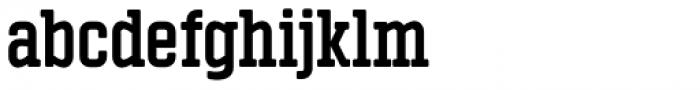 Vin Slab Pro Bold Font LOWERCASE