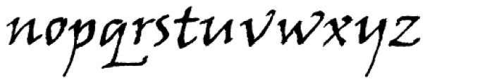 Viner Hand Std Font LOWERCASE