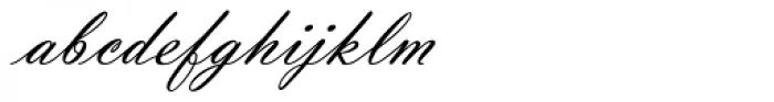 Violin Script Pro Font LOWERCASE