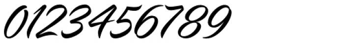 Virmana Script Regular Font OTHER CHARS