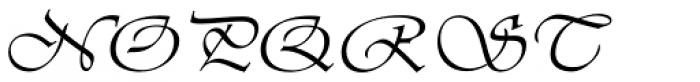 Vivaldi H Font UPPERCASE