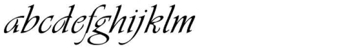 Vivaldi Font LOWERCASE