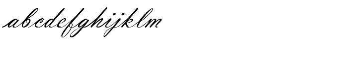 Vladimir Script Standard D Font LOWERCASE