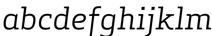 ApexSerif BookItalic Font LOWERCASE
