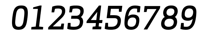 ApexSerif MediumItalic Font OTHER CHARS