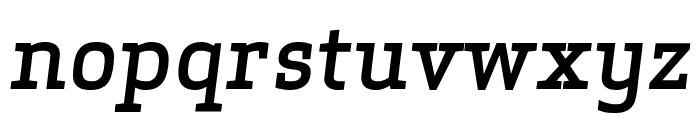 ApexSerif MediumItalic Font LOWERCASE