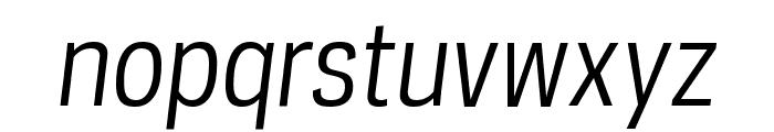 PolarisCondensed BookItalic Font LOWERCASE
