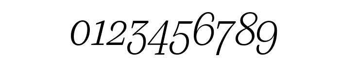 SilvaDisplay ExtralightItalic Font OTHER CHARS