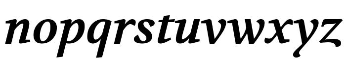 Volkhov Bold Italic Font LOWERCASE