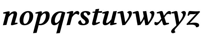 Volkhov-BoldItalic Font LOWERCASE