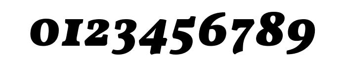 Vollkorn Black Italic Font OTHER CHARS