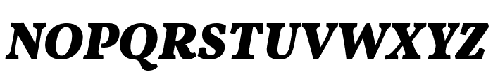 Vollkorn Black Italic Font UPPERCASE