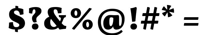 Vollkorn Black Font OTHER CHARS