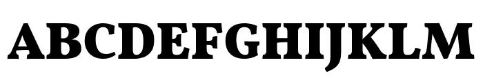 Vollkorn Black Font UPPERCASE