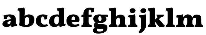 Vollkorn Black Font LOWERCASE