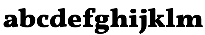 Vollkorn Bold Font LOWERCASE