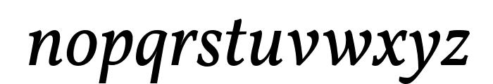 Vollkorn Italic Font LOWERCASE