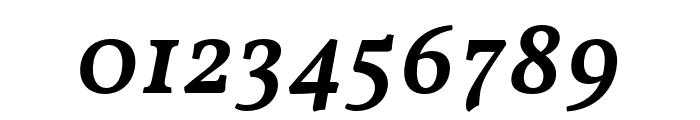 Vollkorn Medium Italic Font OTHER CHARS