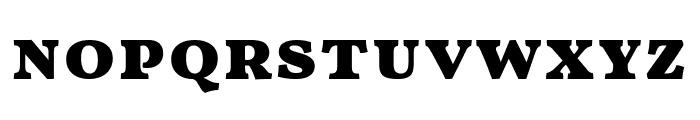 Vollkorn SC Black Font LOWERCASE