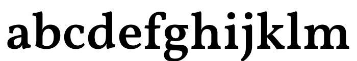 Vollkorn SemiBold Font LOWERCASE