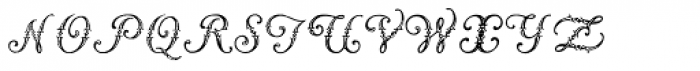 Vogus Font LOWERCASE