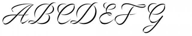 Volina Font UPPERCASE