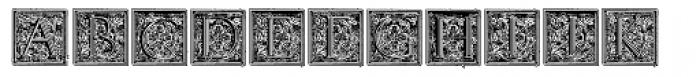 Volitiva Capitular N2 Font LOWERCASE