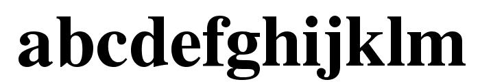 VremyaFWF Bold Font LOWERCASE