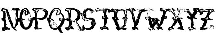 VTC-SumiSlasherOneSkinnedRaw Font LOWERCASE