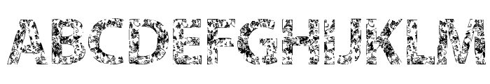 VTKS FLOWERS IN OUR SOUL Font UPPERCASE