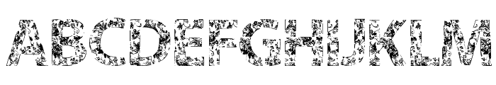 VTKS FLOWERS IN OUR SOUL Font LOWERCASE
