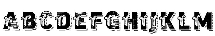 vtks trutagem Font LOWERCASE