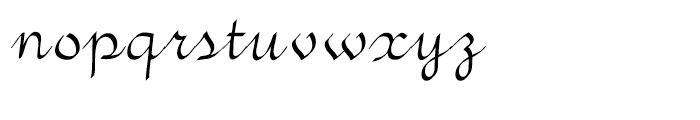 Vunder Script Regular Font LOWERCASE