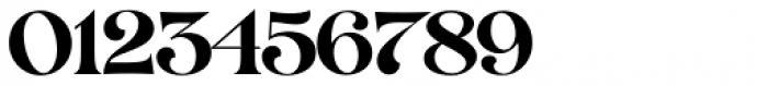 VVDS Organum Medium Font OTHER CHARS