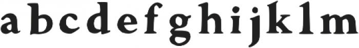 Walker Bold Regular otf (700) Font LOWERCASE