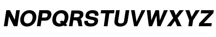 Warownia Black Oblique Font UPPERCASE
