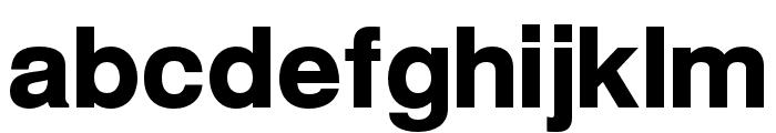 Warownia Black Font LOWERCASE