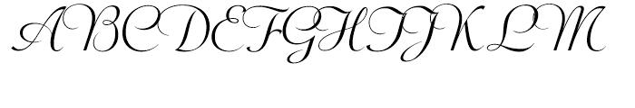 Wagner Script Regular Font UPPERCASE