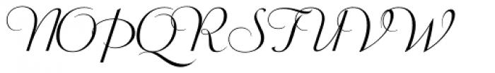 Wagner Script Alt Font UPPERCASE