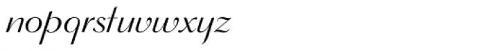 Wagner Script Alt Font LOWERCASE