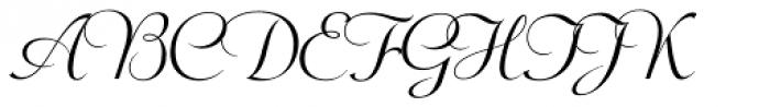 Wagner Script Pro Font UPPERCASE