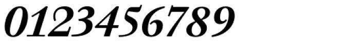 Walbaum 12 pt Semi Bold Italic Font OTHER CHARS