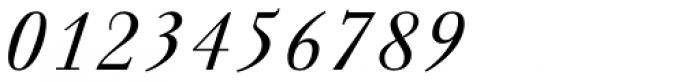 Walbaum Antiqua Pro Book Italic Font OTHER CHARS