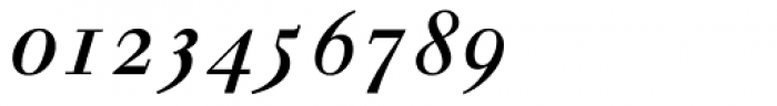 Walbaum Italic Oldstyle Figures Font OTHER CHARS
