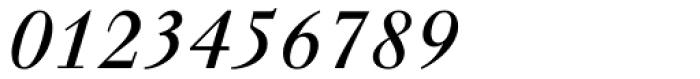 Walbaum Italic Font OTHER CHARS