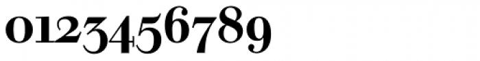 Walbaum SB Medium OsF Font OTHER CHARS