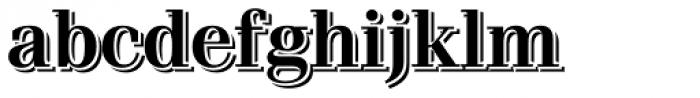 Waldorf Pro Echo Font LOWERCASE