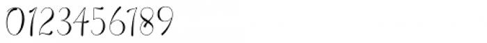 Wallingness Script Regular Font OTHER CHARS