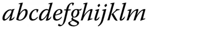 Warnock Pro Italic Font LOWERCASE